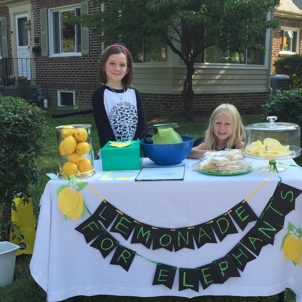 Julias lemonade stand